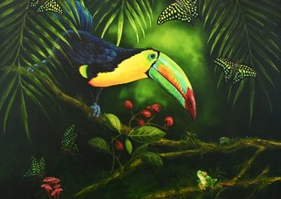 Toucan and Worried Frog